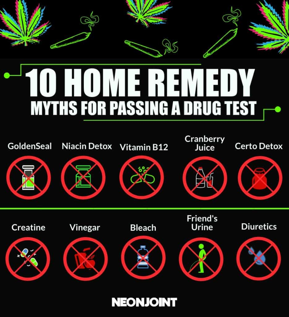 Home remedy myths for passing a drug test